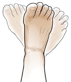 Foot Mobility Exercises